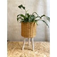 Wicker Flower pot