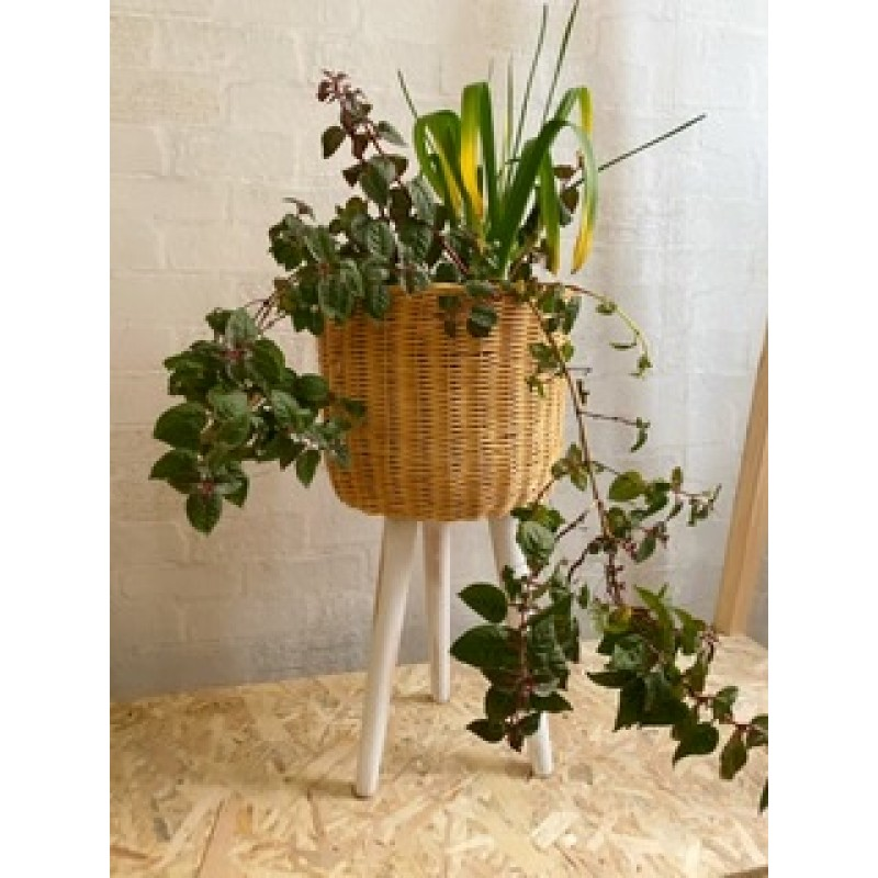 Wicker Flower pot ( big)